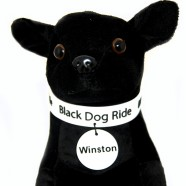 /home/blackdogride/public_html/wp-content/uploads/2017/03/2016-Winston-7-Copy.jpg